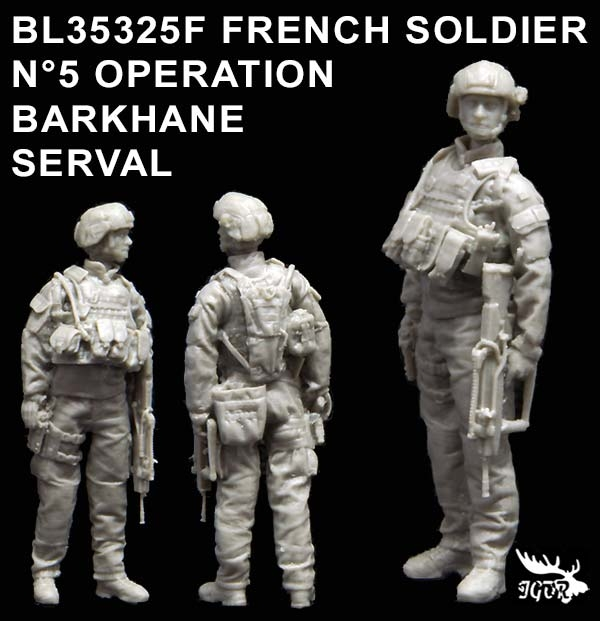BL35325F-FRENCH-SOLDIER-N5LW.JPG