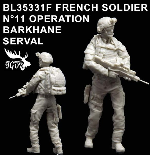 BL35331F-FRENCH-SOLDIER-N11LW.JPG